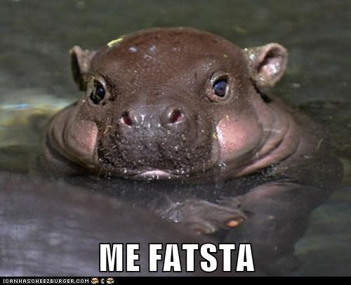 baby chubby fat hippo me gusta water - 5960100352