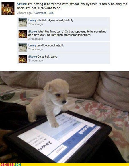 cute,dogs,facebook,mean,tablet,the internets