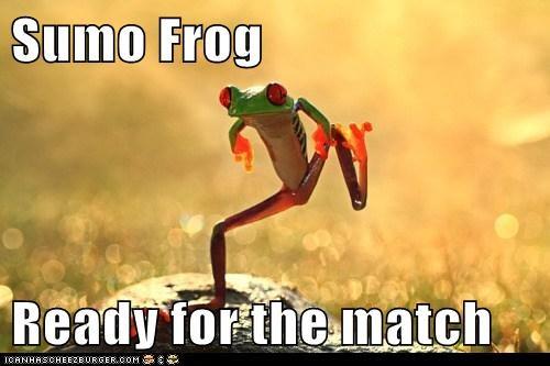 ceremony dance frog match ring salt sumo wrestling - 5961544704