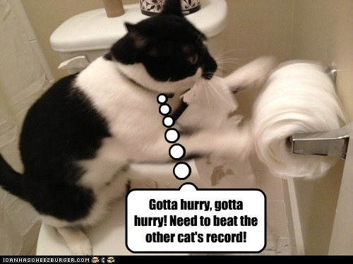 Gotta hurry, gotta hurry! Need to beat the other cat's record!