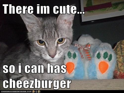 Cheezburger Image 5963397376