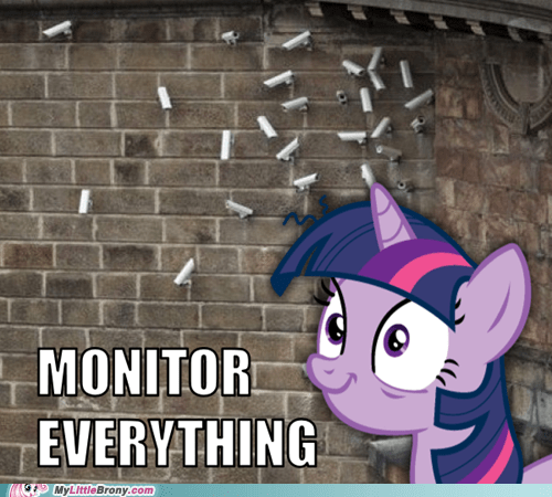 meme monitor everything only possible choice twilight sparkle - 5963538176