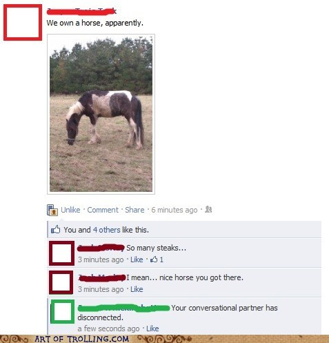 disconnect facebook i own a horse steaks - 5963666688
