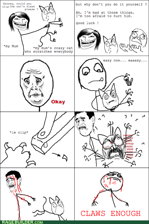 best of week,cat,Close Enough,Okay,Rage Comics