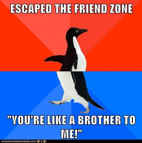 socially awkward penguin - 5965367808