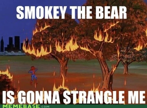 fire,Forest,meme madness,Smokey,Spider-Man