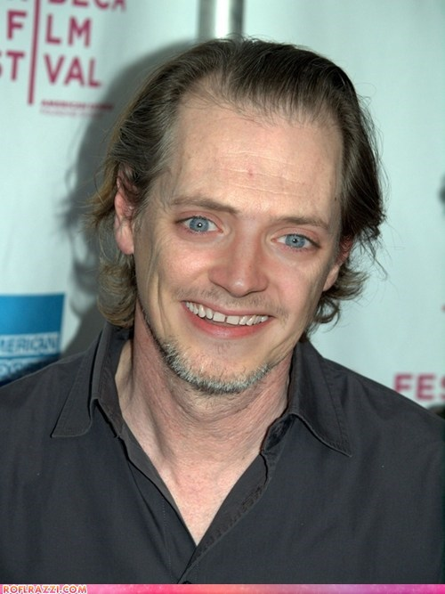 actor,celeb,elijah wood,face swap,funny,nightmare fodder,shoop,steve buscemi,wtf