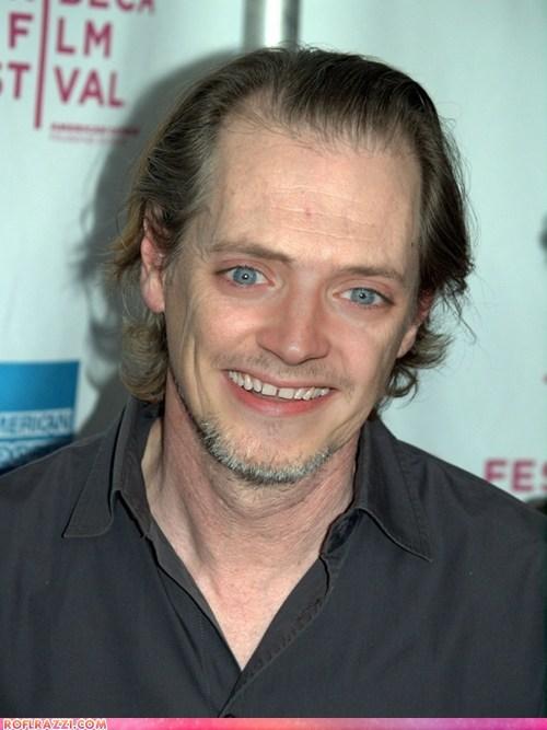 actor celeb elijah wood face swap funny nightmare fodder shoop steve buscemi wtf - 5966957568