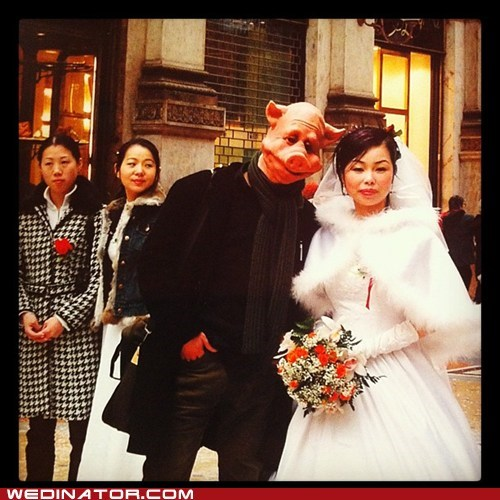 bride,funny wedding photos,groom,masks,pig