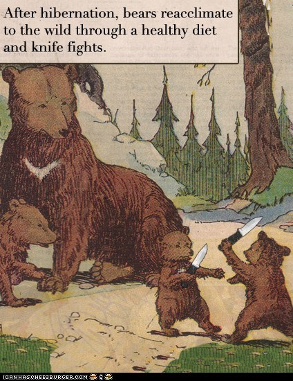 acclimation after bears diet fights healthy hibernation knife Knife fighting wild - 5967391232