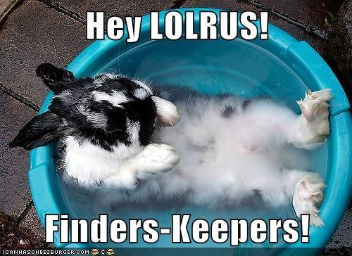 bath,bukkit,bunny,hot tub,lolrus,rabbit,tub,walrus