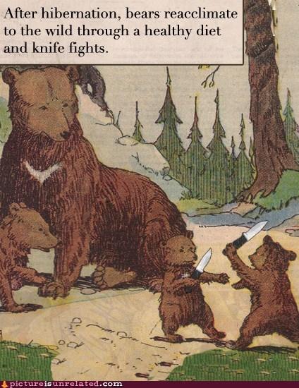 bears best of week hibernation knives wtf - 5967516160