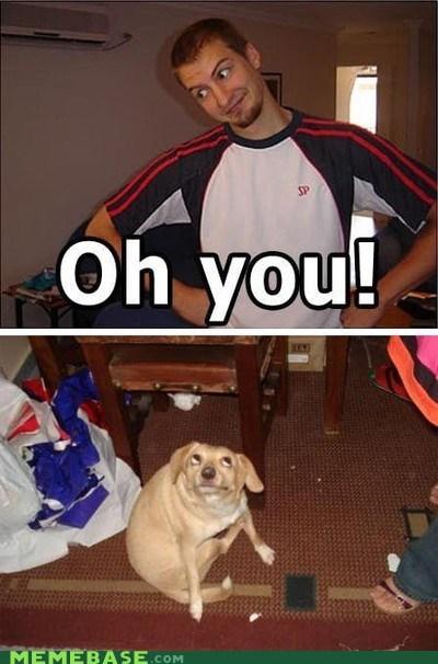 OH DOG