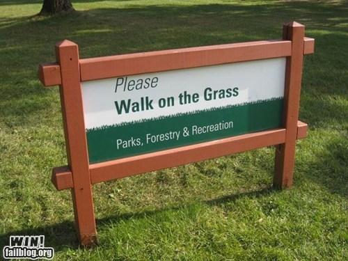 clever,grass,notice,park,play,sign