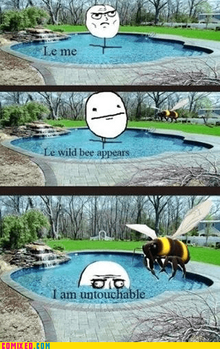 bees,me gusta,swimming,the internets
