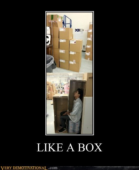 bizarre,box,guy,hilarious,Like a Boss,wtf
