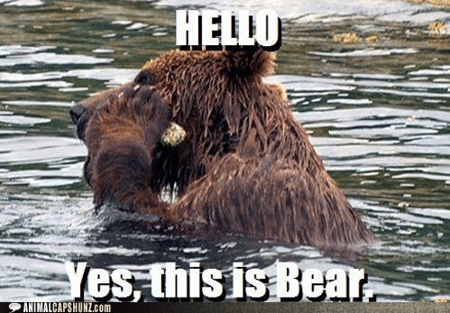 bear call hello hello this is dog listen phone river