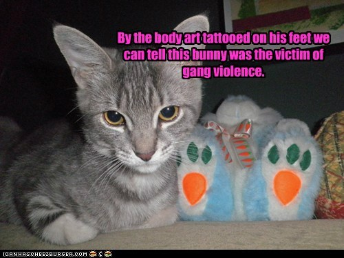 best of the week bunny cat csi evidence gang Hall of Fame marking stuffed animal tattoo victim violence - 5971573760