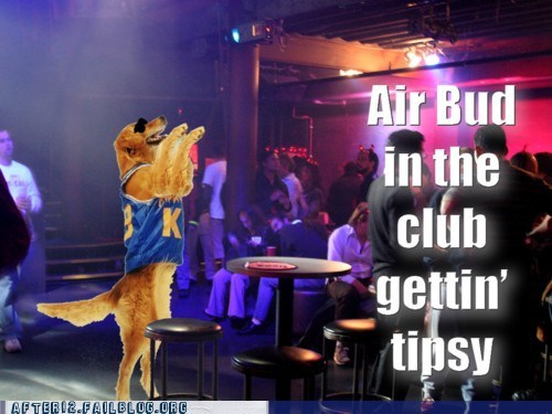 air bud,club,dogs,hip hop,pun