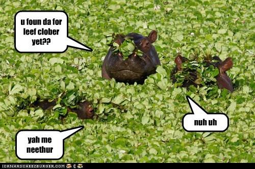 Cheezburger Image 5972201216