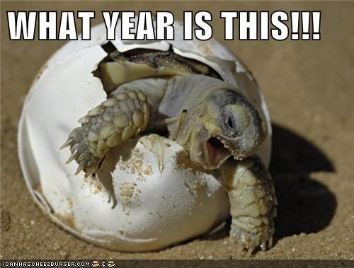 baby animals eggs hatch jumanji robin williams tortoise turtle What Year Is This