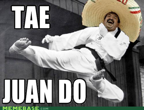 asia,juan,kicking,kwan,Memes,tae kwan do