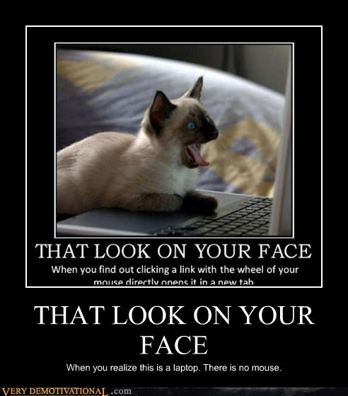 cat face hilarious laptop mouse - 5972486656