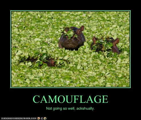 CAMOUFLAGE Not going so well, ackshually.