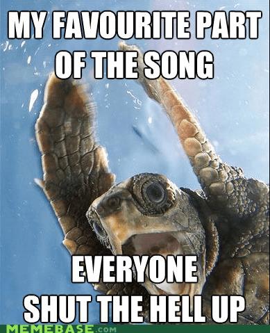 dance Memes radio song turtle