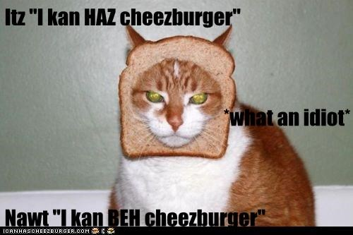 Cheezburger Image 5973893632