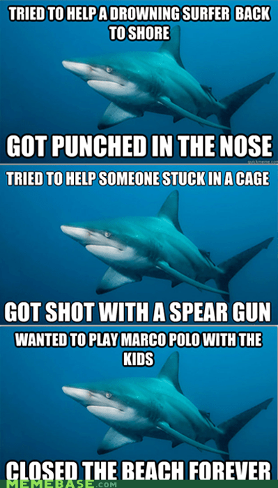 misunderstanding,misunderstood mitch,Sad,shark