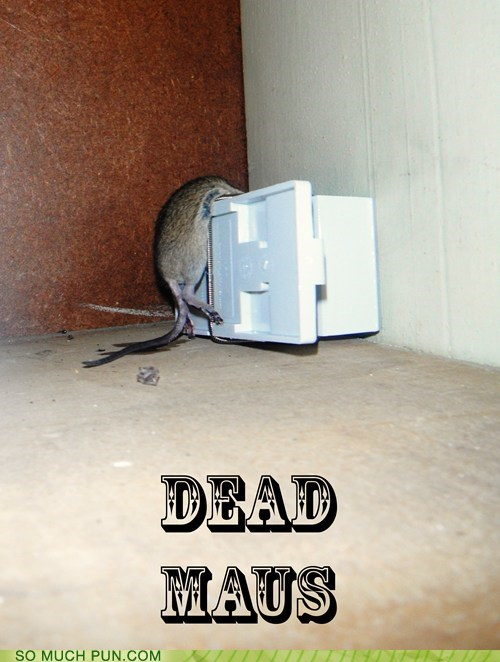 dead,deadmaus,double meaning,literalism,mouse