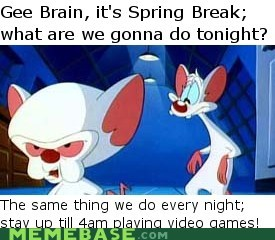 meme pinky and the brain spring break video games - 5974552064