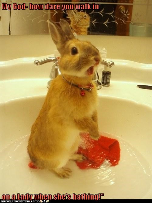 bath,bathing,bunny,how dare you,lady,offended,rabbit,walked in
