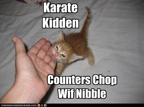 bite biting chop counter karate kitten nibble nibbling
