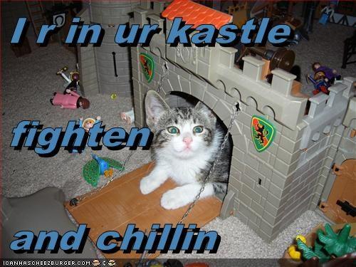 Cheezburger Image 5976186368
