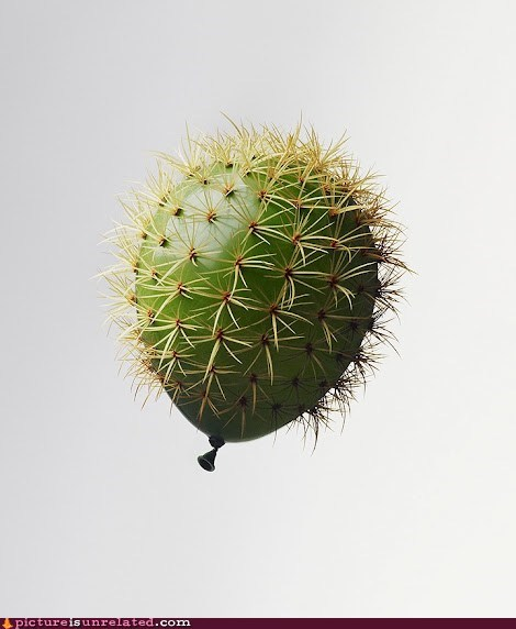 And I Became My Worst Fear...Now I´m The Cactusballon!