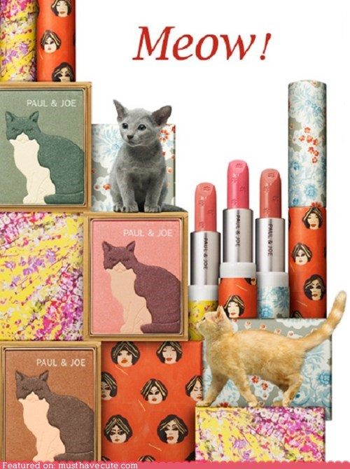 collection cosmetics kitty makeup paul-joe