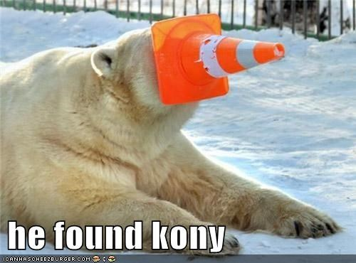 cold cone face Invisible Children Kony kony 2012 polar bear snow winter - 5978171904