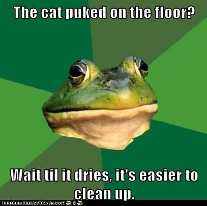 Cats,clean up,floors,foul bachelor frog,frogs,gross,Memes,puke