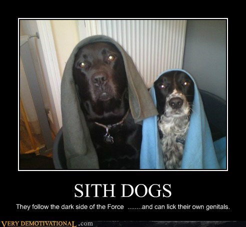 dogs genitals hilarious sith