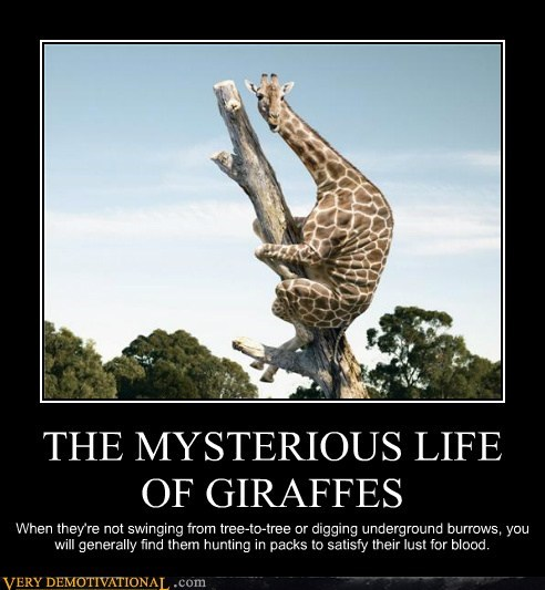 animals climbing creepy giraffes hilarious wtf - 5979723264