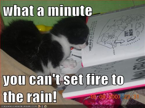 what a minute you can't set fire to the rain!