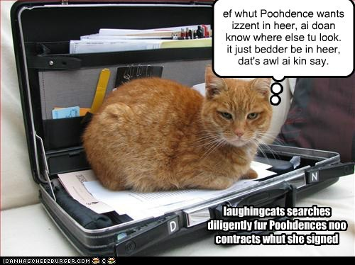 ef whut Poohdence wants izzent in heer, ai doan know where else tu look. it just bedder be in heer, dat's awl ai kin say. laughingcats searches diligently fur Poohdences noo contracts whut she signed