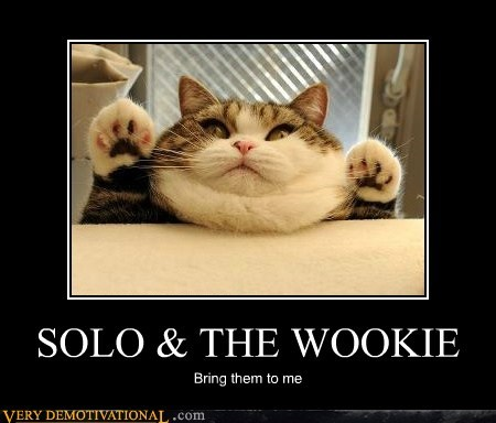 cat,Han Solo,hilarious,jabba the hutt,star wars,wookie