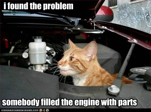 best of the week,cat,engine,filled,found,Hall of Fame,mechanic,parts,problem,tabby