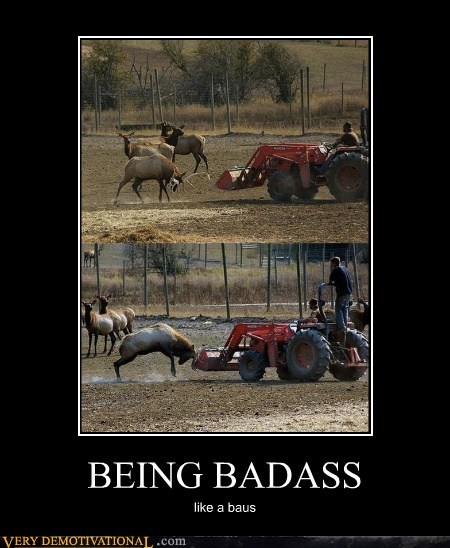deer,hilarious,Like a Boss,tractor,wtf