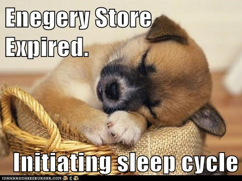 Enegery Store Expired. Initiating sleep cycle
