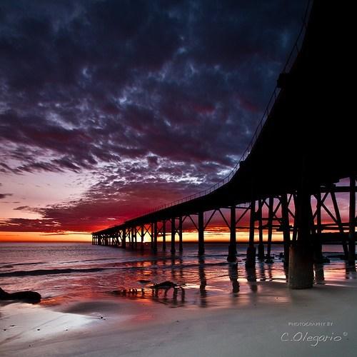 boardwalk ocean pier - 5981536768