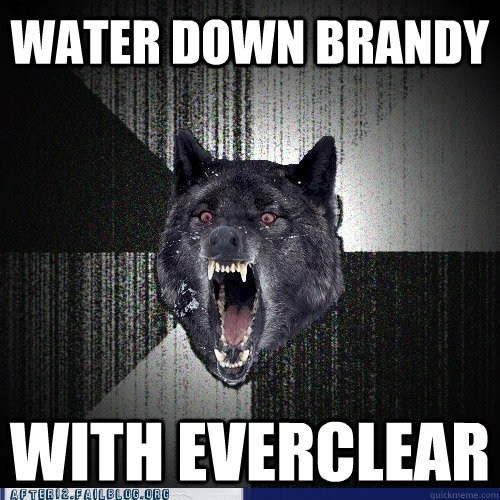 brandy everclear Insanity Wolf meme - 5981767168